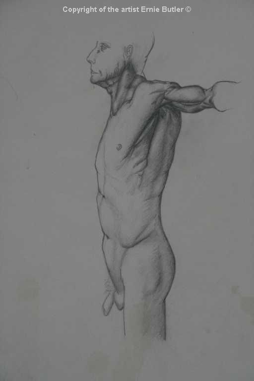 elderly male anatomy study drawing pencil graphite